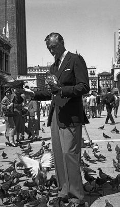 American actor Gary Cooper, wearing a blazer and a tie, standing in St.Mark Square while smoking a cigarette and feeding pigeons, Venice Get premium, high resolution news photos at Getty Images Gary Cooper, Hollywood Stars, Golden Age Of Hollywood, Hollywood Actor, Classic Hollywood, Cary Grant, John Wayne, Beverly Hills, Montana