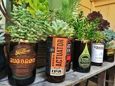 The Bruery | Summer Camp Crafts with our Friends: Upcycled Beer Bottle Garden