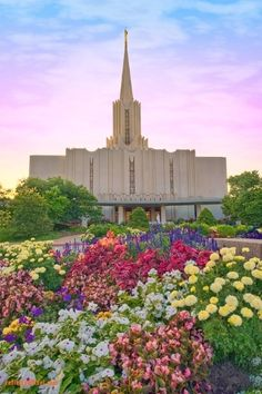 I finally updated my blog again!  I know its long overdue, but this post is about my experience of going through the temple for the first time...