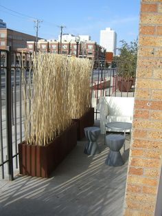 Stick privacy screen. This could be done with living willow.