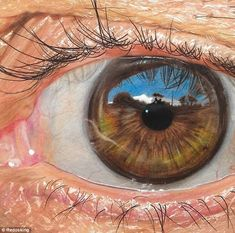 """Texas-based artist Jose Vergara (a. Redosking), a self-described """"graffiti artist with a Medieval heart,"""" brings colored pencil art to a higher level. The artist uses them to create impressively realistic drawings. Illustration Photo, Illustrations, Realistic Eye Drawing, Realistic Paintings, Wtf Fun Facts, Random Facts, Coloured Pencils, Color Pencil Art, Painting & Drawing"""
