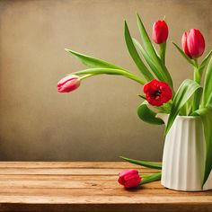Similar Images, Stock Photos & Vectors of Still life with white peonies in vase - 129447686 Tulips Flowers, Fresh Flowers, Flower Vases, Colorful Flowers, Spring Flowers, Beautiful Flowers, Flower Frame, Flower Art, Tulip Bouquet