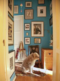 Turquoise blue + art gallery in entry by Schuyler Samperton interior design