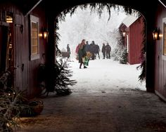 Christmas on the farm~ would be a lovely spot for a family photo!