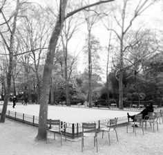 At the Jardin du Luxembourg  ©slshawphotgraphie