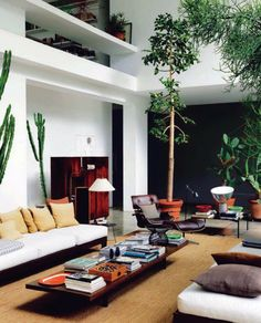 modernist living room / plants