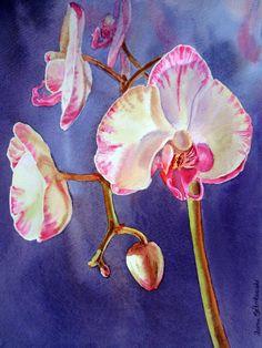 orchid paintings | Irina Sztukowski - Fine Art