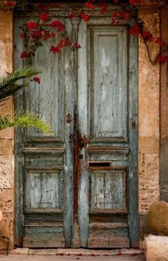 old door, red flowers