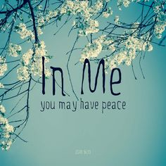 """""""I have told you these things, so that in me you may have peace. In this world you will have trouble. But take heart! I have overcome the world."""" John 16:33    https://www.ourdailybreadcrumbs.com/john-16-33-v2/"""