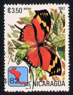 NICARAGUA - CIRCA 1982: A Stamp printed in NICARAGUA shows image of a  butterfly Consul hippona, circa 1982