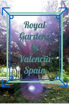 Valencia's Royal Gardens are a great way to spend a day in nature while in the city.