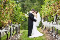 Kristi   Jonathan:: A Truly Joyous Wedding at Wolf Mountain Vineyards in GA :: with Jen    In between the rows of the vineyard