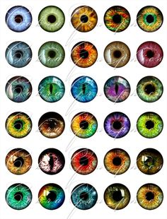 omg earrings and necklaces and rings....Rainbow Eyes Digital Collage Sheet CG-361 -1 inch circles (or smaller) for Scrapbooking, Resin, Glass Pendants, Bottle Caps. $4.50, via Etsy.