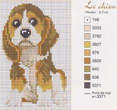 .surprised puppy cross stitch