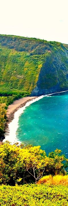 1. Waipio Valley Beach, Big Island, Hawaii The valley floor at sea level is almost 2,000 ft (610 m) below the surrounding terrain. A steep road leads down into the valley from a loout point located on the top of the southern wall of the valley. The road gains 800 vertical feet (243.84 m) in …