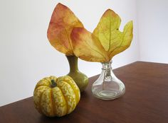 Thanksgiving Craft: Preserve Fall Leaves With Wax Paper >> http://blog.diynetwork.com/maderemade/2013/10/10/how-to-preserve-fall-color-leaves/?soc=pinterest