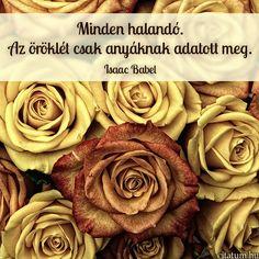 Imagem gratis no Pixabay - Rosas, Flores, Red, Planta Valentine Love, Black And White Roses, White Art, Photocollage, Rose Art, Purple Roses, Beautiful Roses, Romantic Roses, Beautiful Couple