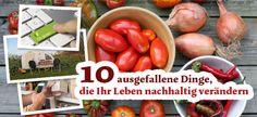10 nachhaltige Lebensveränderungen
