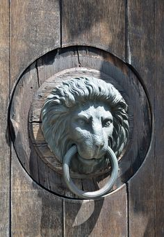 Ordinaire Lion Head Door Knocker At The Main Entrance Of Burg Neulengbach Castle,  Lower Austria