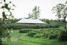 Tent Reception | Monadnock Berry Farm | Troy, NH