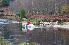 Ride in the Beautiful Wicklow Mountains! Horse riding Ireland. www.stable-mates.com
