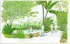 San Diego Zoo Safari Park Tiger Trail (Version 2)