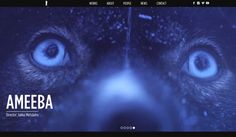 Inuitin suunnittelemat ja toteuttamat Pablo Filmsin uudet verkkosivut julkaistiin syksyllä 2014. Pablon ja Inuitin yhteinen historia on jatkunut vuosia, nyt valmistuneet sivut ovatkin jo kolmannet Inuitin toteuttamat.
