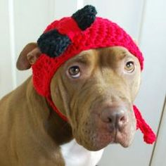 Red with Black Bow Crochet Hat