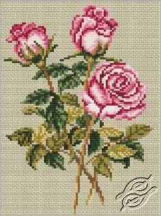 Roses on Linen