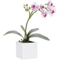 I pinned this Faux Orchid Arrangement from the Torre & Tagus event at Joss and Main!