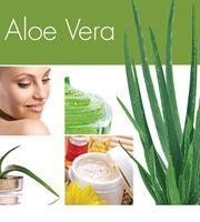 Aloe Vera 1 kp