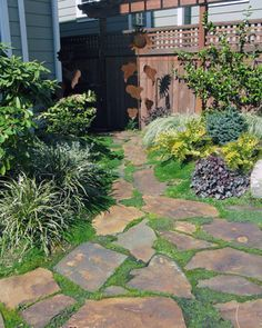 Image result for landscaping rocks with dog run