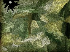 Gallery | Tin Can Forest