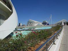 valencia su altı müzesi