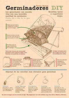 Infograf_a_Germinador_victorpaiam_gmail.com                              …