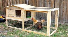 Chicken Coop - DIY: Small Backyard Chicken Coop Building a chicken coop does not have to be tricky nor does it have to set you back a ton of scratch. Chicken Coop Designs, Chicken Coop Decor, Small Chicken Coops, Chicken Barn, Easy Chicken Coop, Diy Chicken Coop Plans, Chicken Coup, Backyard Chicken Coops, Building A Chicken Coop