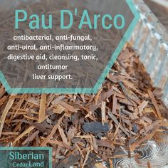 Pau D'Arco health benefits and uses. Herbs For Health, Health And Wellness, Women's Health, Healing Herbs, Natural Healing, Alternative Health, Healthy Tips, Healthy Food, How To Dry Basil