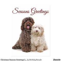 Christmas Seasons Greetings Labradoodle Friends Postcard Christmas Dog, Christmas Greetings, Golden Doodle Dog, Goldendoodle, Party Hats, Dog Lovers, Merry, Seasons, Friends