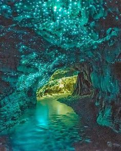 No, this is not a picture from a fairytale, it's a real place!  Glowworm Caves in Waitomo, New Zealand where you can glide on a boat through the grotto...surely has to be seen to be believed
