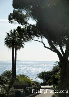 Pathway to the sea. Cote d'Azur France