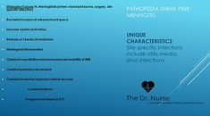 Pathopedia: Including the patho of the disease, the signs/ symptoms you will see and the priority interventions. Otitis Media, Student Info, School Info, Education Degree, Sinus Infection, Nurse Practitioner, Study Materials, Nursing Students, Nervous System
