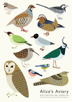 Alice's Aviary by Alice Melvin. Great art for kids rooms and the nursery.
