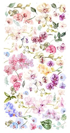 Hand Drawn Watercolor Orchids by knopazyzy on Orchid Wallpaper, Watercolor Wallpaper, Watercolor Flowers, Tattoo Watercolor, Wallpapers Tumblr, Cute Wallpapers, Orchid Drawing, Orchids Painting, Orchid Centerpieces