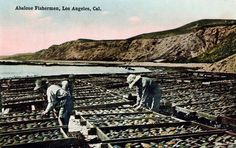 Abalone fishermen in Los Angeles in the early 20th century.