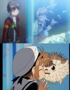 Cardcaptor Sakura Clear Card: the puffer fish