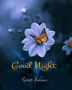 Good Night For Him, Good Night Prayer, Good Night Blessings, Good Night Gif, Good Night Sweet Dreams, Good Night Image, Good Morning Good Night, Night Time, Good Night Hindi Quotes
