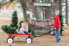 Could use wagon for kids to pull Christmas tree in  christmas photo ideas, knoxville photographer