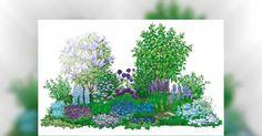 """Das Beet ist so konzipiert, dass es zu allen Jahreszeiten Blaublüter gibt. Hier die Sommeransicht, entnommen aus dem Buch """"Blumenbeete"""", BLV-Verlag."""
