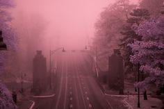 lions gate in fog