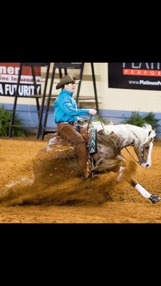 The ideal stop Reining Horses, Pony, Animals, Events, Pony Horse, Animales, Animaux, Ponies, Animal